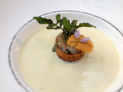 Fennel-Cockle-Veloute