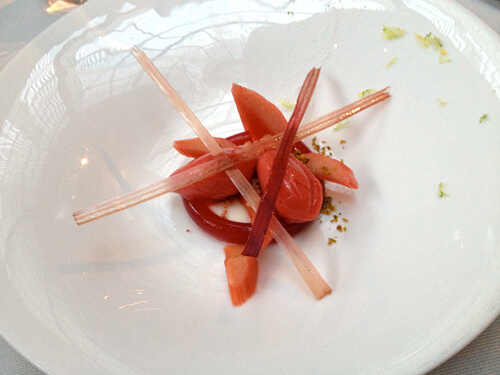 Rhubarb-Sorbet